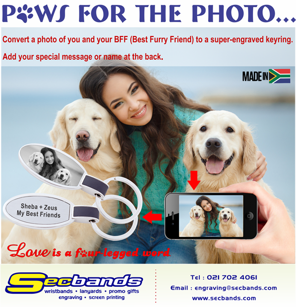 Pet Keyring Campaign